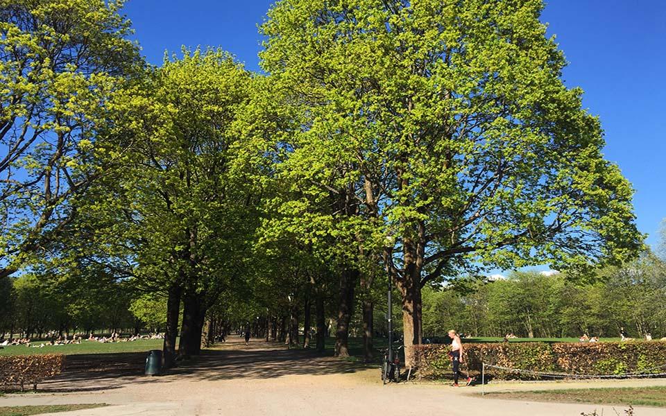 Fartslek i Frognerparken / Løping / Løpetrening